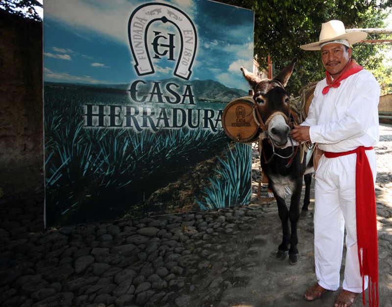Mężczyzna w tradycyjnym stroju meksykańskim stojący z osiołkiem