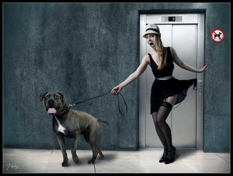 Drzwi windy przytrzasnęły sukienkę dziewczyny
