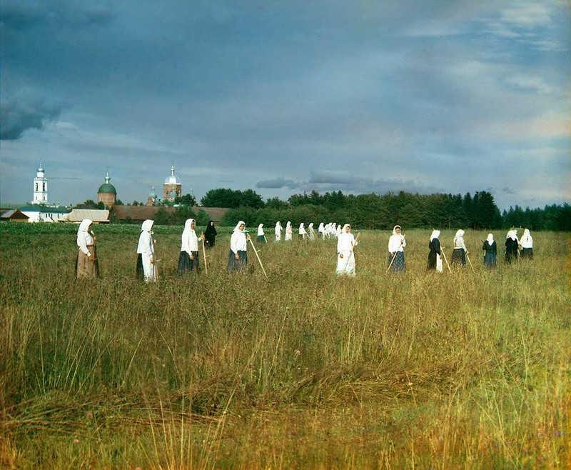 Grupa ludzi podczas sianokosów