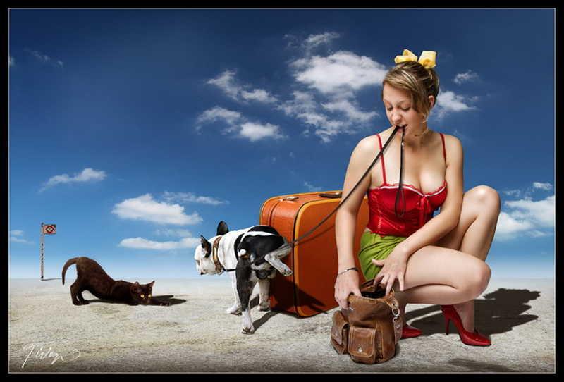 Piesek opsikuje walizkę kobiety