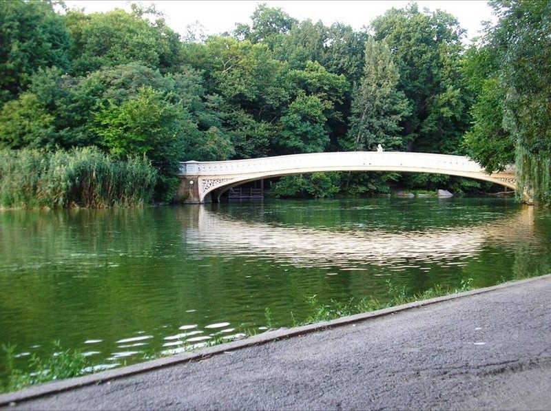 Łukowaty mostek w parku miejskim