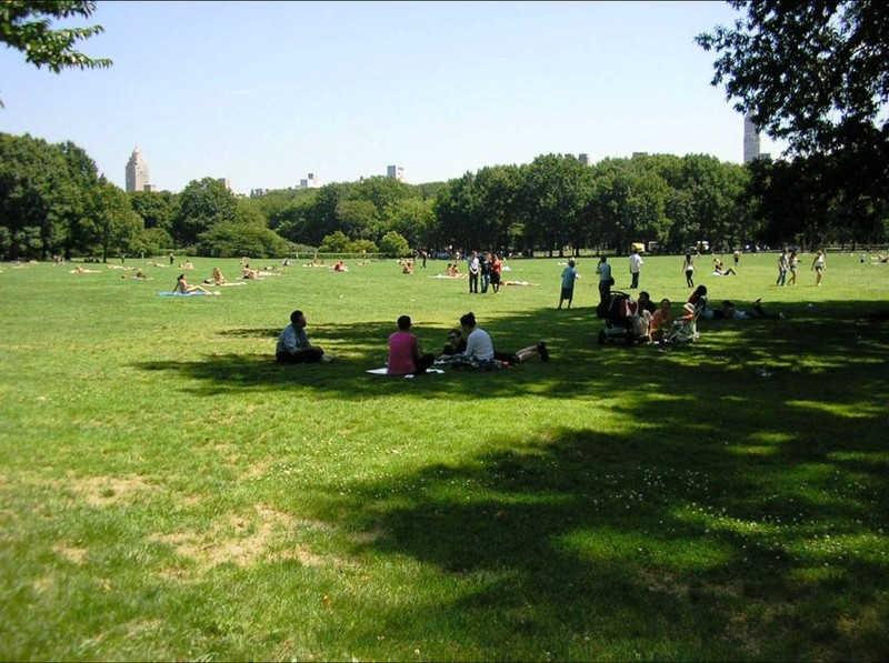Ludzie odpoczywający w parku na trawie