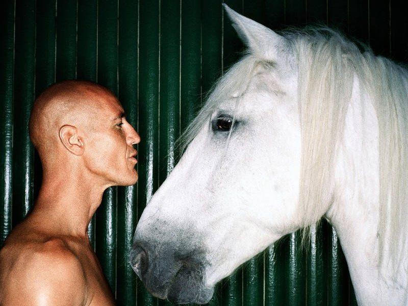 Mężczyzna i biały koń