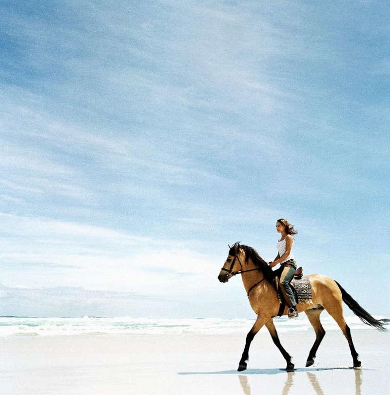 Dziewczyna na karym koniu