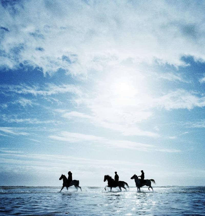 Grupa trzech jeźdzców na koniach